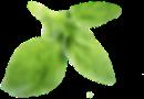parallax-icon